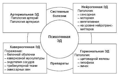aa6d — Издательство ПИМУ